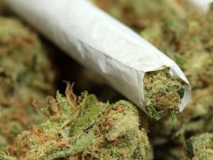 marijuana cannabis ohio oh