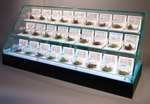 marijuana dispensary ohio oh