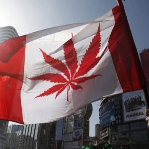 canadian legalization marijuana, ohio next?